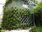 Фасадна жива градина
