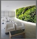 Проектиране на фасадна жива градина