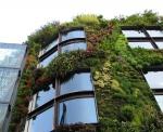 Жива озеленена фасада