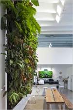 Стени от растения